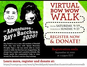 2020 Virtual Bow WOW Walk